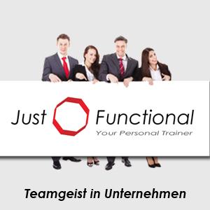 Teamgeist in Unternehmen mit Just Functional